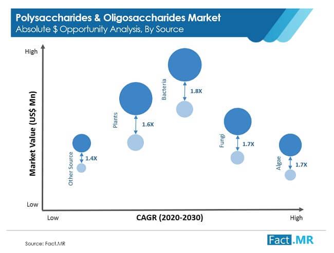 polysaccharides &  oligosaccharides  image 01