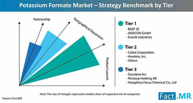 potassium formate market strategy benchmark by tier