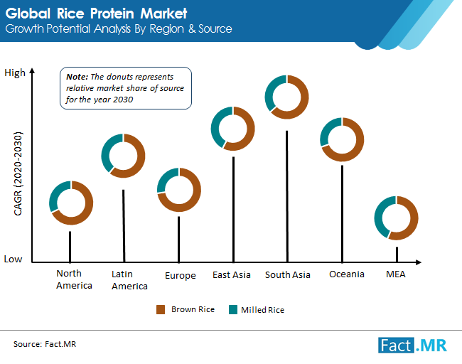 rice protein  market 02