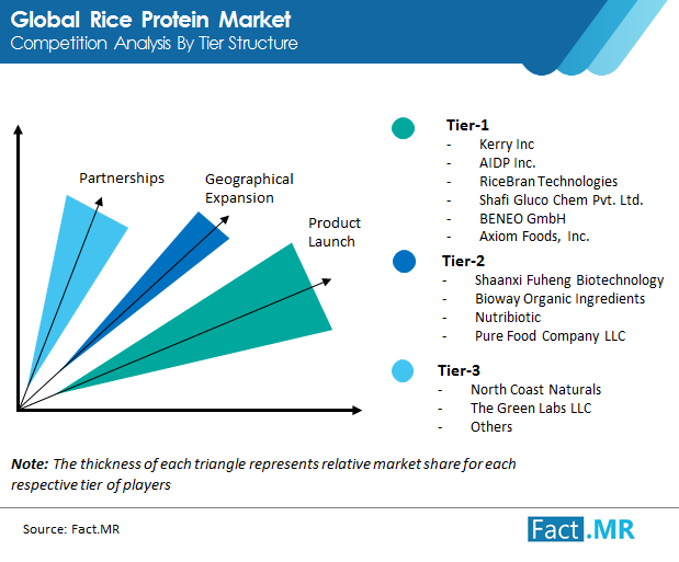 rice protein  market image 01