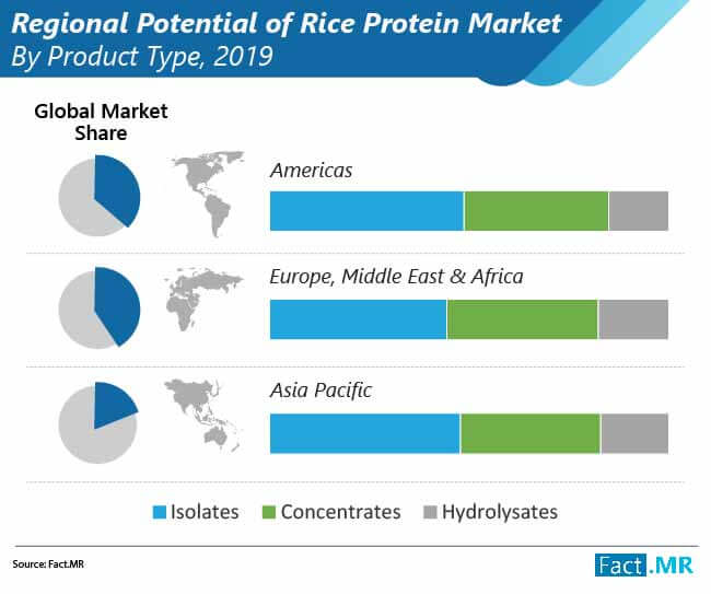 rice protein market by product type