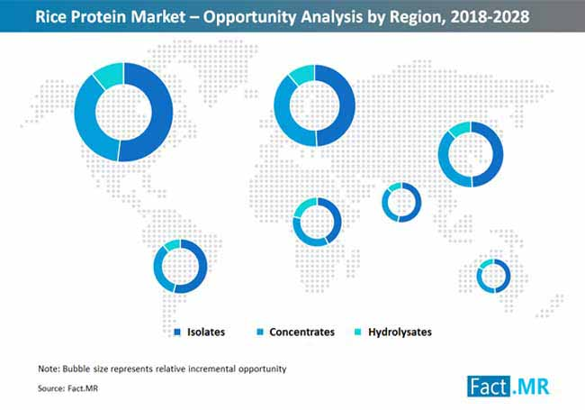 rice protein market opportunity analysis