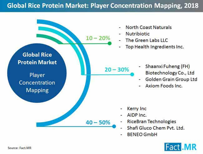 rice protein market player competition