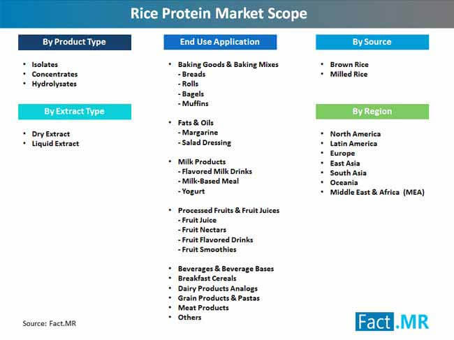 rice protein market scope