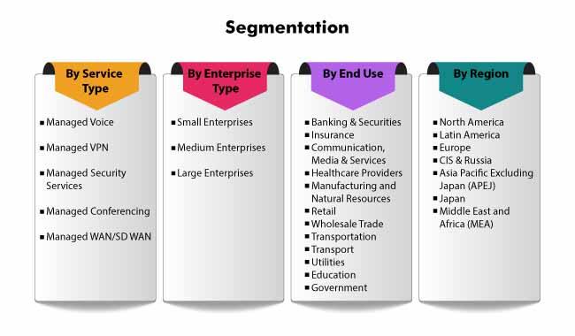 segmentation managed network services market 1