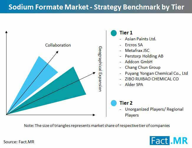 sodium formate market strategy benchmark by tier