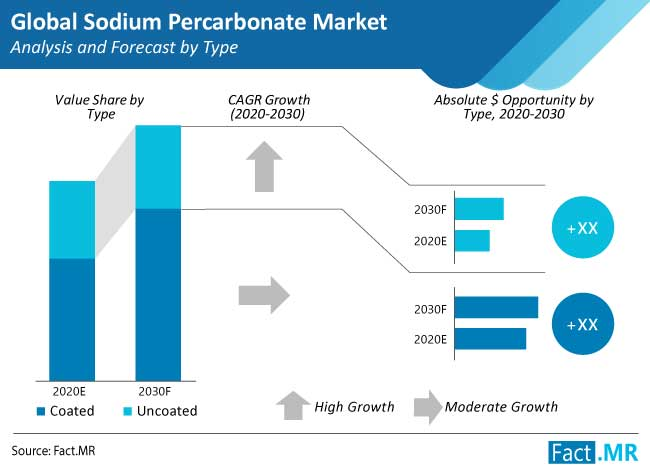 sodium percarbonate market analysis and forecast by type