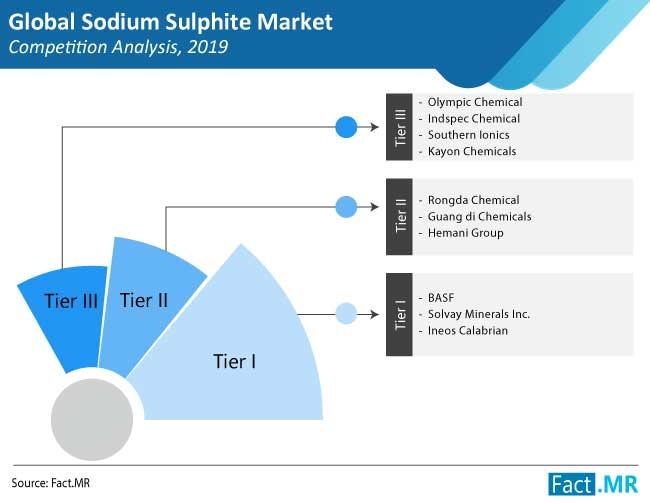 sodium sulphite market competition analysis