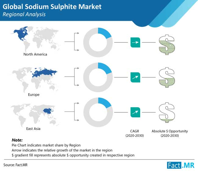 sodium sulphite market regional analysis
