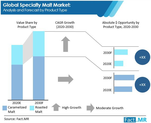 specialty malt market analysis and forecast by product type