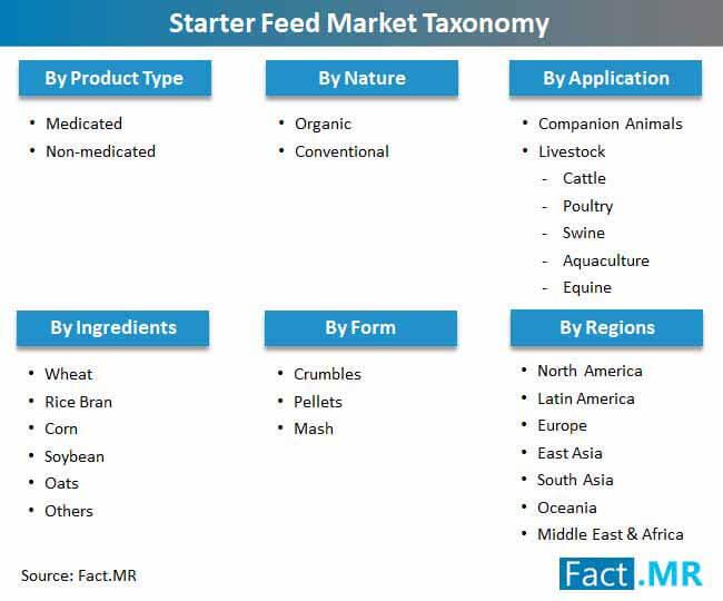starter feed market taxonomy