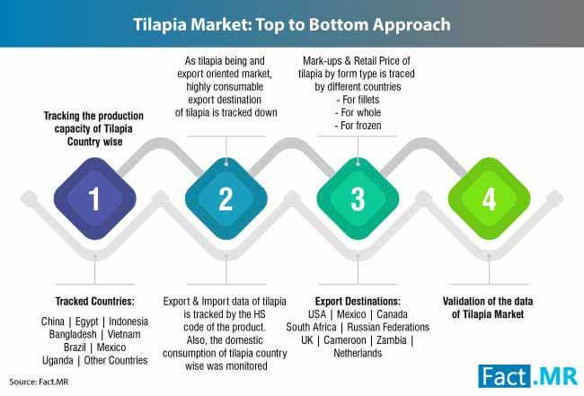 tilapia industry 2