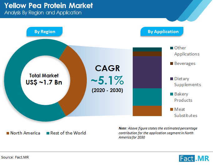 yellow pea protein market analysis by region and applicatin