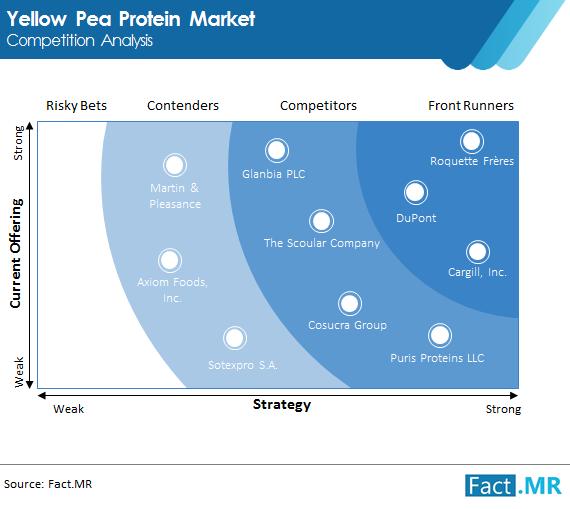 yellow pea protein market competition analysis